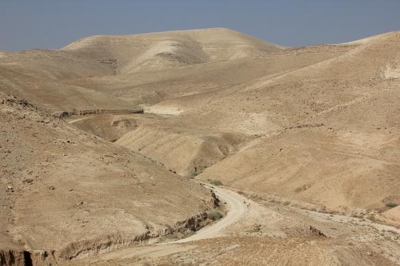 Israel 229