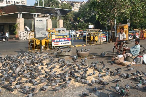 Mumbai 018